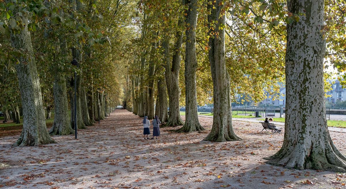 Park Chamars